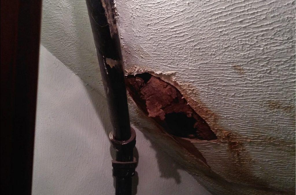 Closet Plaster Damage